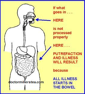 It is to one's advantage to truly understand the digestive system, this helps in the war against disease.