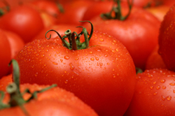 tomatoes - a great source of healthy lycopene