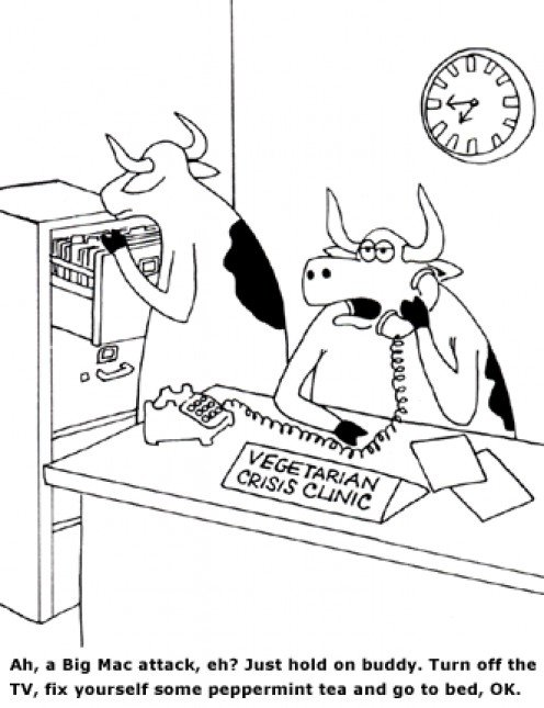 What if cows had a support hotline?