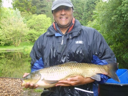 Grass Carp at Les Rouvets
