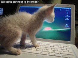 At Home on Internet (Flickr)