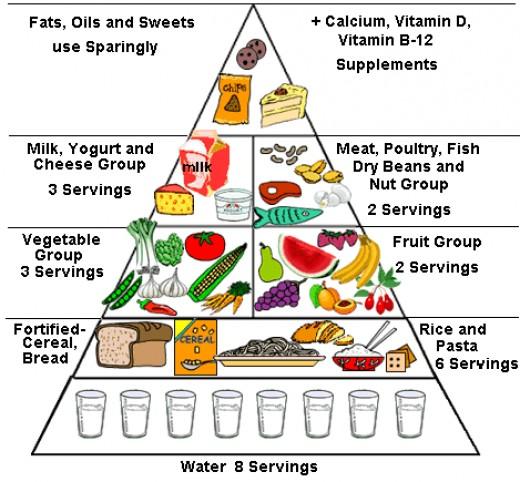 www.ohsu.edu/.../images/food_pyramid.gif