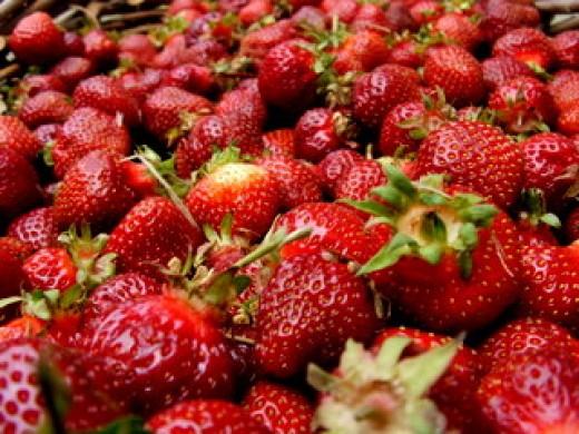 Photo Courtesty of CeresSecrets.com