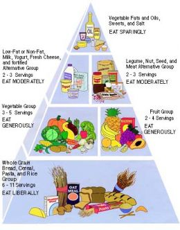 My Pyramid Vegan Diet provided by the USDA