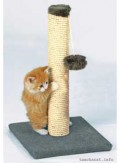 Scratching, stretching, climbing and playing - top favorite activities for any kitty! (c) teachacat.info