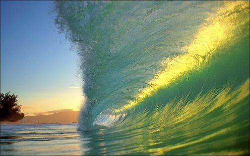 jpeg image, Oceans of life