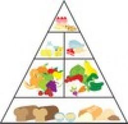 Weight Watchers Balanced Diet