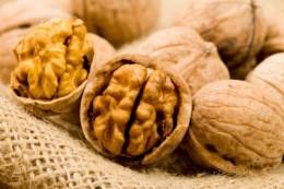 'Brain Nut'