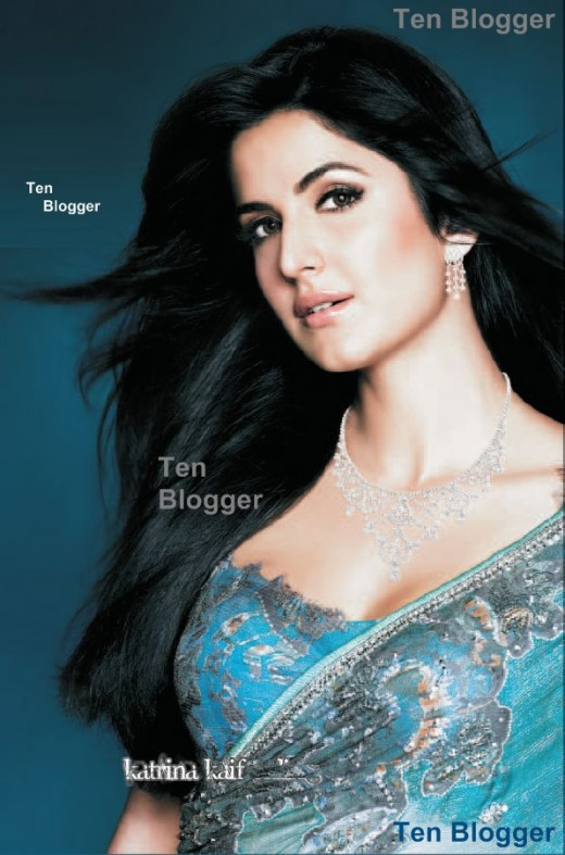 Katrina Kaif Saree - Beautiful Blue Saree