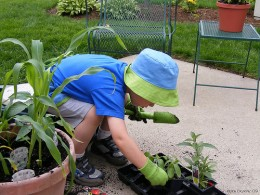 You can also involve your kids into gardening.