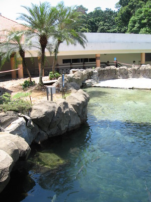 Underwater World Credit: Sengkang Copyright: Wikimedia Commons