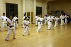 Facts You May or May Not Know About Karate