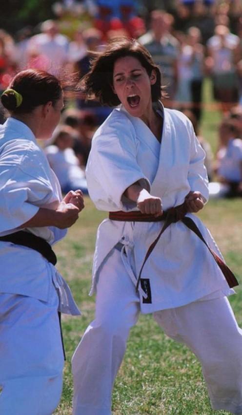 karate spirit image by pawprintpalscouk