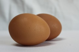 Farm fresh free roaming chicken eggs.