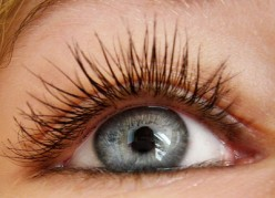 Eyelash Growth Rate