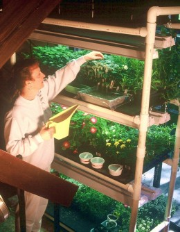 Build Pvc Plant Stand