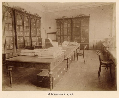 An old russian botanical museum in 1917.