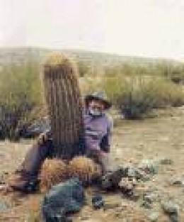 Cactus that really pricks!