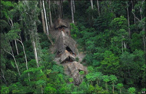 They face real threat of having their domain land-grab by illegal loggers