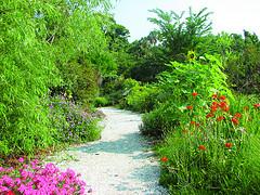 A Beautiful Butterfly Garden Heaven on Earth