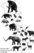 Extinctions of the Earth
