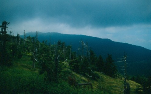 A cloudy Mount Mitchell from NC 128.