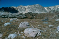The top of the Snowy Range Pass showing the Medicine Bow Mountains, Wyoming.