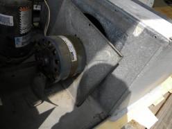 AC fan motor with mounts loose to oil inside bearing