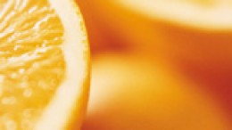 VITAMIN C - A powerful antioxidant that protects against cell damage!