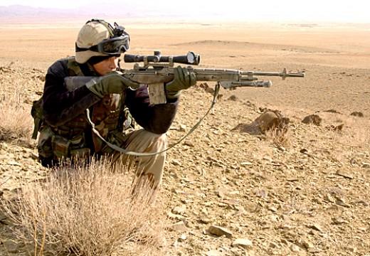 bet arizona 3000 deputized armed m14s scopes