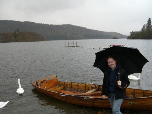 Swans on Windermere Lake
