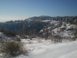 Snow fall creates a beautiful winter wonderland in the San Bernardino Mountains.