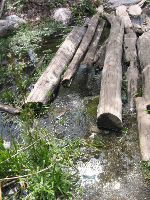 To access the Mill Creek Area, you must cross stones and logs.
