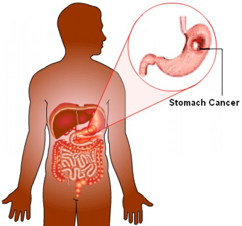 abnormal liver function test significance