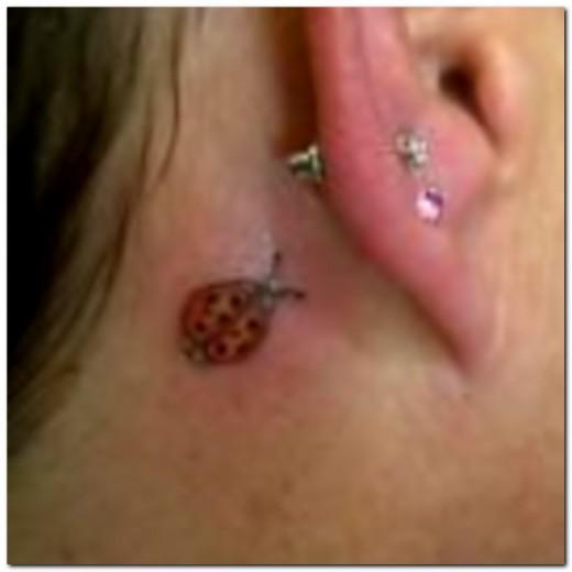 D) Behind the ear
