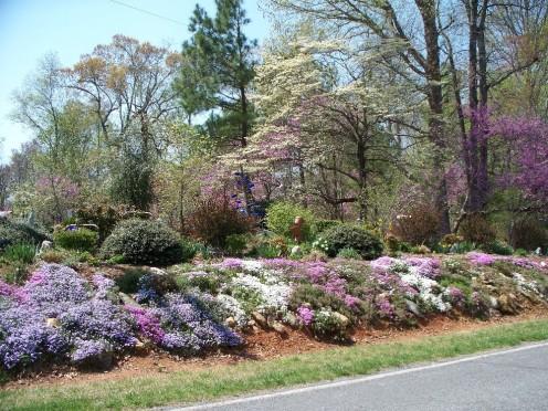 Did Spring spring?