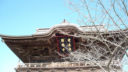 The very impressive roof of San-mon gate