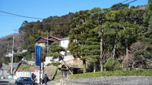 The streets of Kita-Kamakura, complete with beautiful trees, charming houses and plenty of vending machines