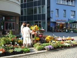 The market square in Jena