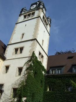 The quadrangle at the university