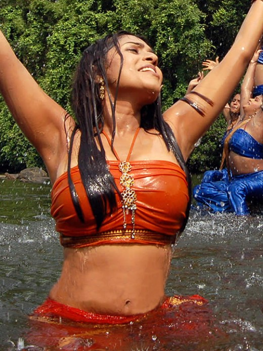 hot wet saree pics