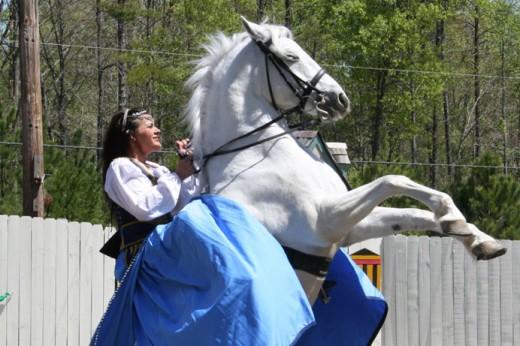 The Royal Lipizzan Stallions perform.