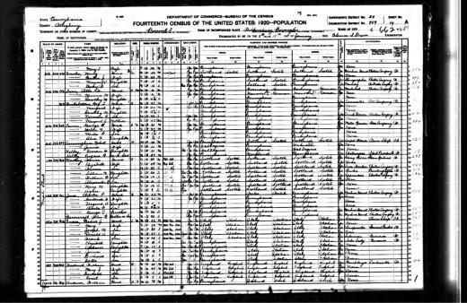 1920 U.S. Federal Census