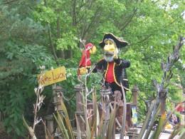 Pirate Falls