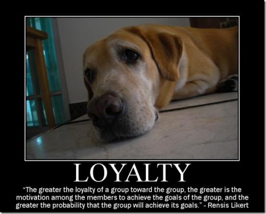 courtesy of http://www.everyjoe.com