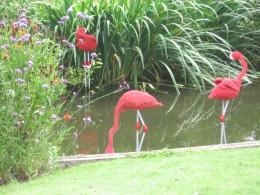 Lego Flamingoes