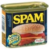 Ways to Prevent Spam On Your WordPress Blog Comments
