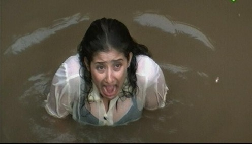 Manisha Koirala blue film scandal Image 5