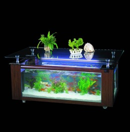 Corner Fish Tank on Are You Looking For Corner Fish Tanks For Sale Corner Fish Tanks Are