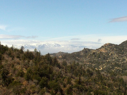 Mount Baldy, also known as Mount San Antonio, is simply beautiful.  The clouds surrounding the peaks are a sign of rain moving into the area on the day the picture was taken.